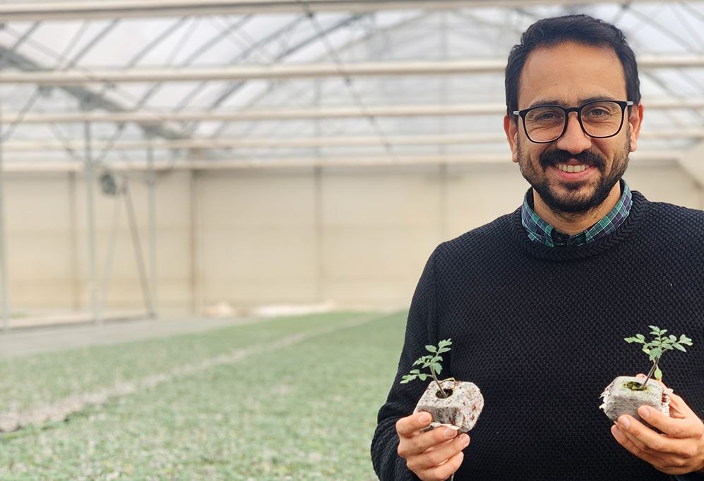 Jiffy Growblock trials for tomatoes in Latin America