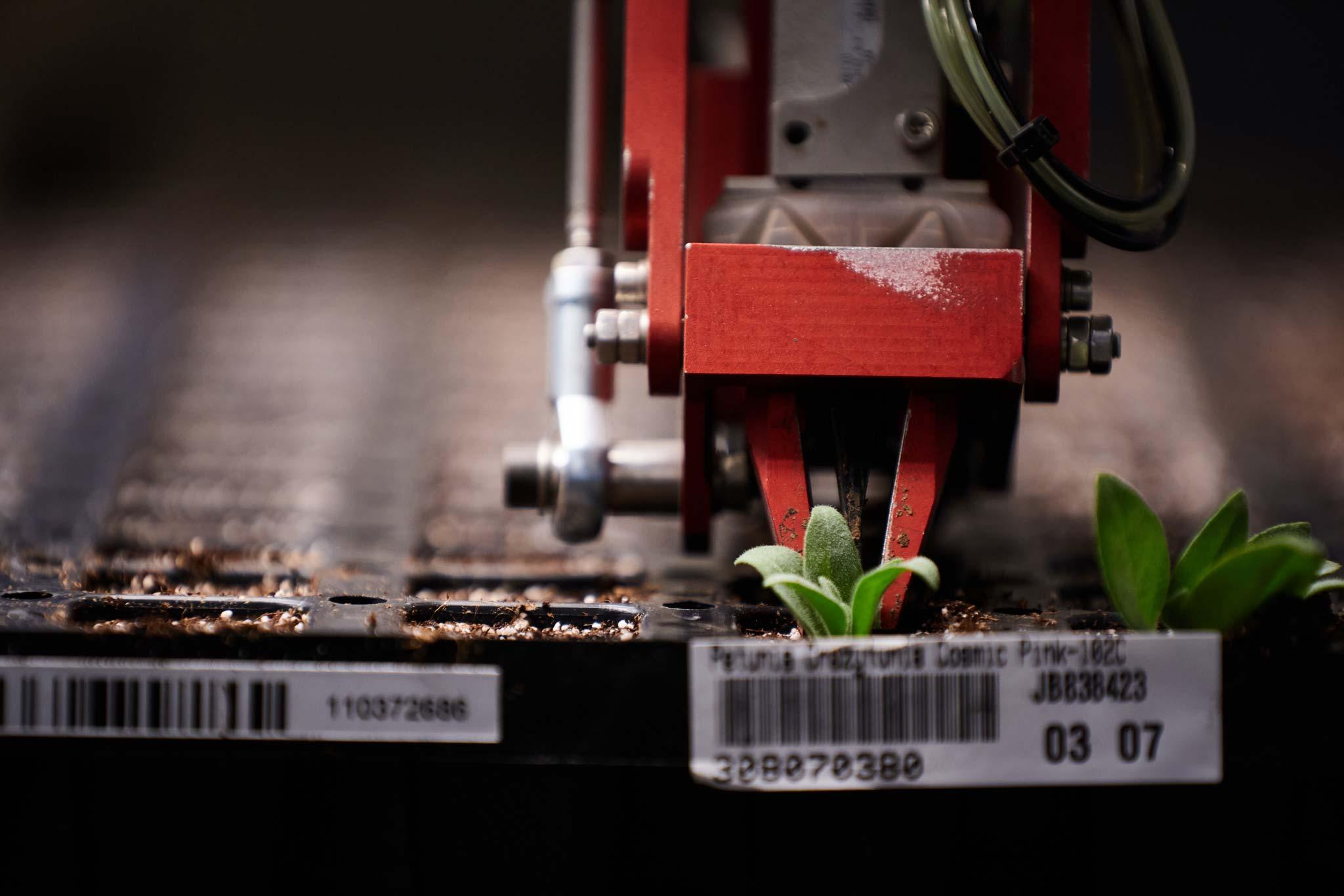 flexistart-automated growing -jiffygroup